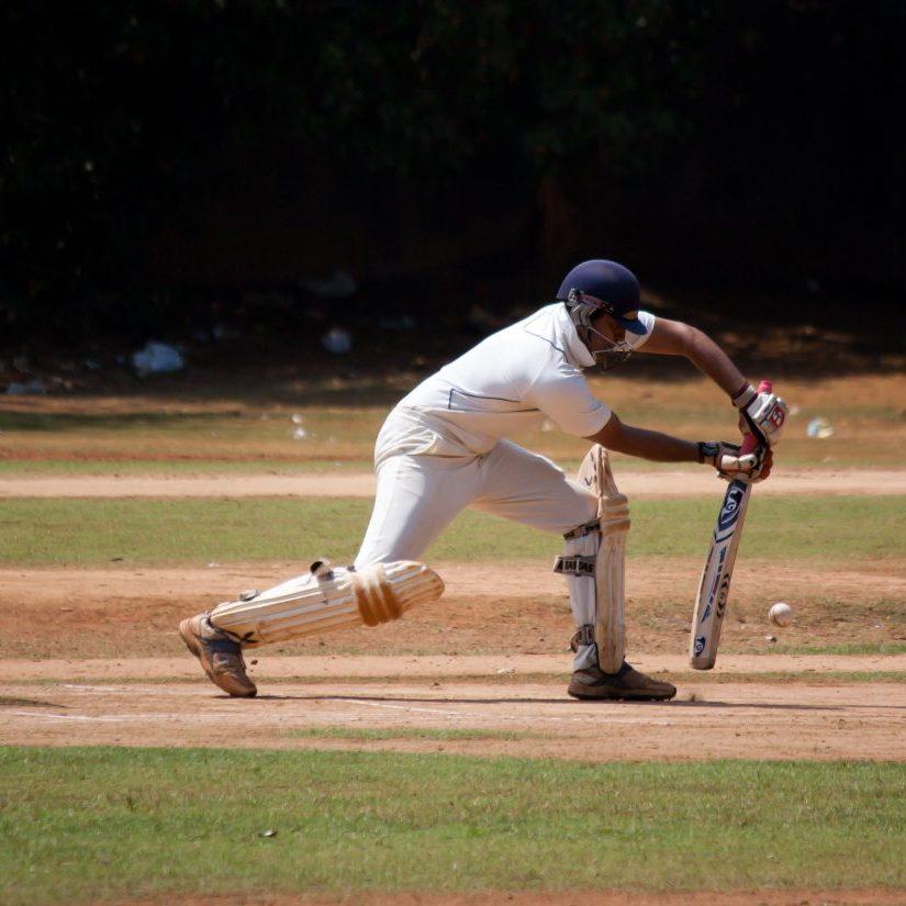 cricket-166906